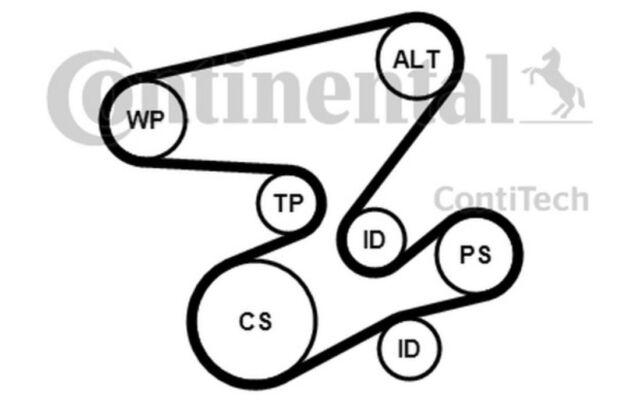 CONTITECH Juego de correas trapeciales poli V para BMW Serie 3 5 X5 X3 7 6