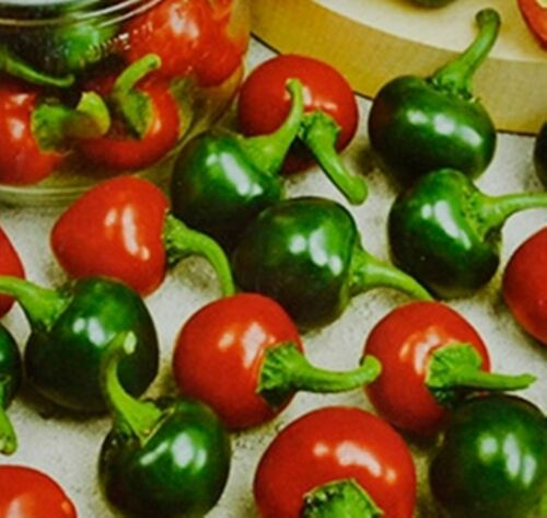 NON GMO Vegetable Seeds Heirloom Chili Pepper Red Cherry