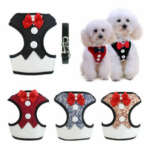 Adjustable-Breathable-Mesh-Small-Dog-Cat-Pet-Harness-Leash-Puppy-Wedding-Vest