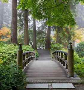 Perfect Image Is Loading Wooden Foot Bridge In A Japanese Garden Wall  Images