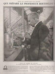 Coupure de presse Le Professeur Berthelot 1923 AuD5918g-09153455-597311959