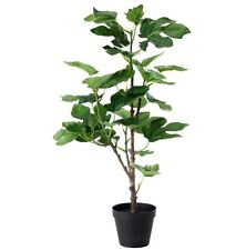 IKEA FEJKA artificial fig plant potted tiny green tree