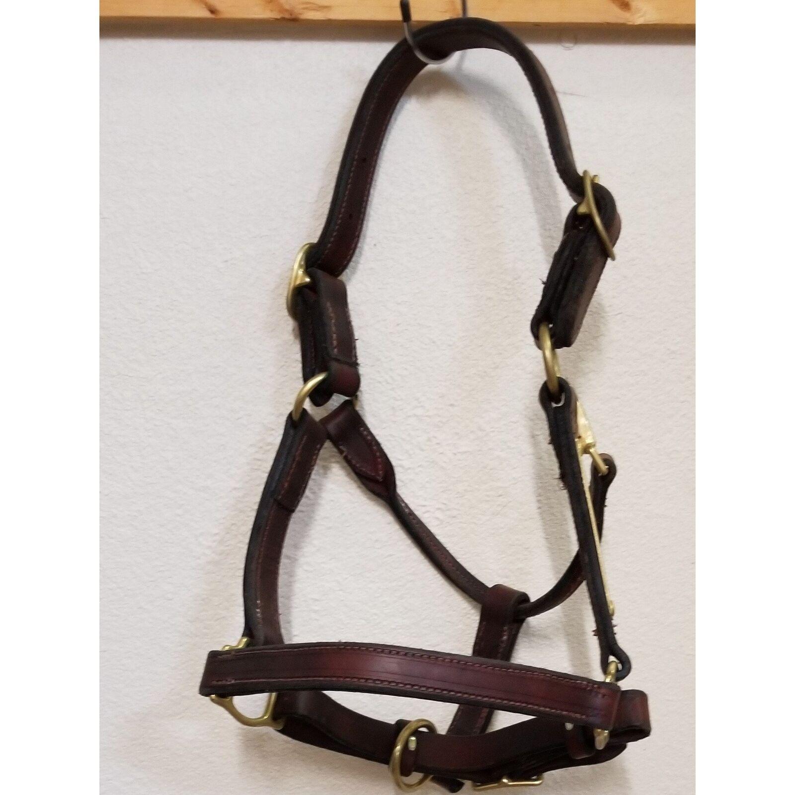 Leather halter fits regular horse bundle  of 2 Halters  55.00  save 50%-75%off