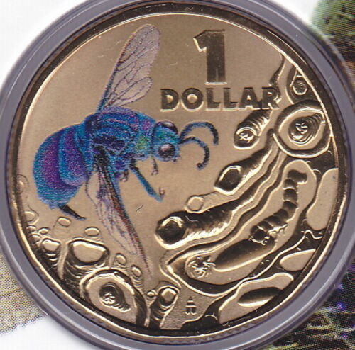 Cuckoo Wasp Coin on Card 2014 $1 Dollar Pad Printed Coin Bright Bugs Series