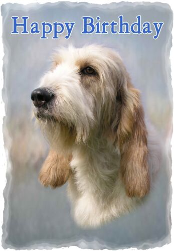 Grand Basset Griffon Vendeen Dog A6 Textured Birthday Card BDGRDBAS paws2print