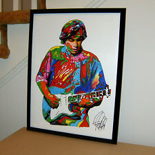 Ry Cooder, Slide Guitar, Blues, Roots Rock, Music, Songwriter 18x24 POSTER 2