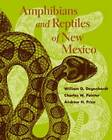 Amphibians and Reptiles of New Mexico by Andrew H. Price, Charles W. Painter, W. G. Degenhardt (Paperback, 2005)
