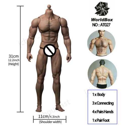 "Worldbox 1//6 Crazy Durable Male Soldier Figure Body fit 12/"" Phicen TBLeague Head"