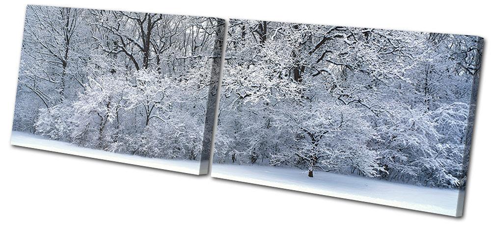 Landscapes Snowy  Forest MULTI LONA pa rojo  Snowy arte Foto impresion af636c