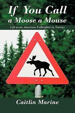 If You Call a Moose a Mouse: Life as an American Fulbrighter in Norway