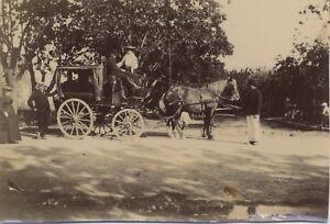 Snapshot-Carrello-Fotografia-Originale-Vintage-Citrato-ca-1900-ND61