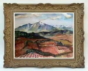 Decouverte d' une grande painter painting // For the Canigou massif (76)