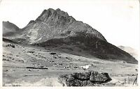 BR68523 tryfan sheep mouton capel curig   wales judges 22114 real photo