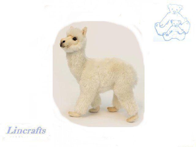 Hansa Cream Alpaca 6024 Plush Soft Toy Sold by Lincrafts Established 1993