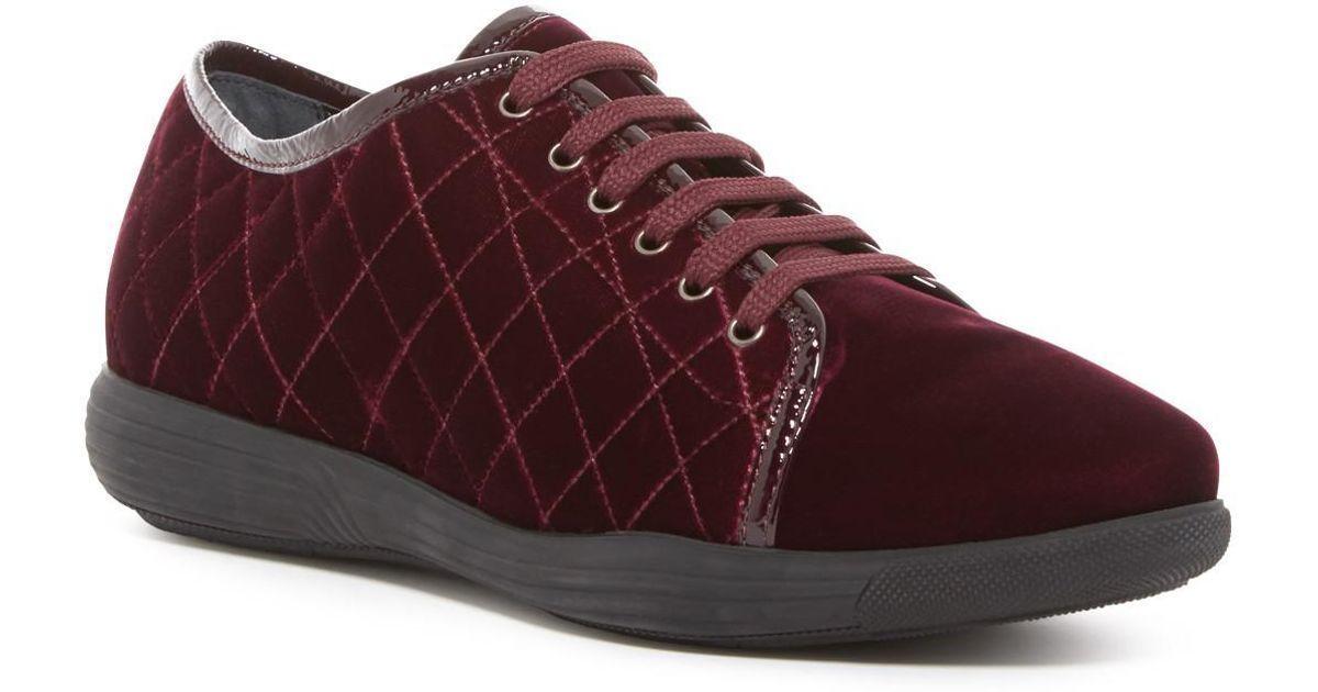 Aquatalia Glenda Quilted Weatherproof Velvet Sneaker - Wine ROT  Größe 7.5