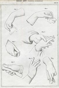 Belle-Arti-Disegno-Principi-di-Figura-6-Incisione-su-Rame-Passepartout-1866
