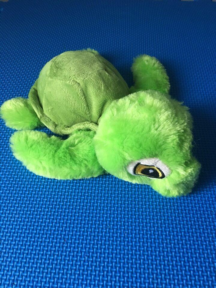 Skildpadde-bamse, Nature Planet