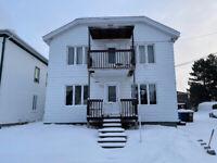 Maison à revenus à vendre 375-379, rue Price ouest, Alma Lac-Saint-Jean Saguenay-Lac-Saint-Jean Preview