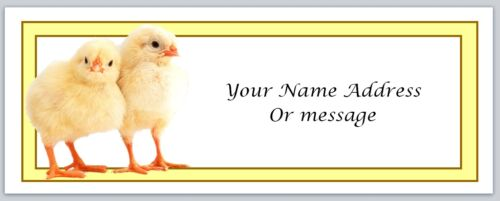 30 Personalized Return Address Labels Chickens Buy 3 get 1 free c 76