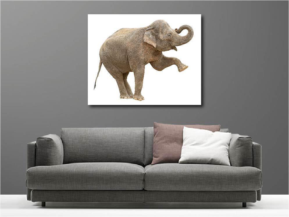 Gemälde Gemälde Deko Set Elefant Ref 55628152