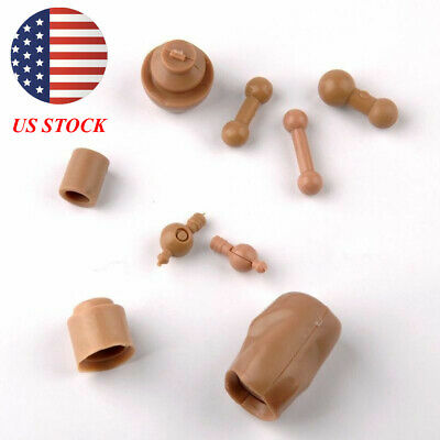"US 9Pcs 1//6 Scale Neck//Foot Conector For 12/"" Male Female Figure Model Body toys"