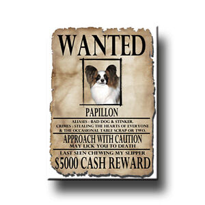 PAPILLON-Wanted-Poster-FRIDGE-MAGNET-New-DOG-Funny