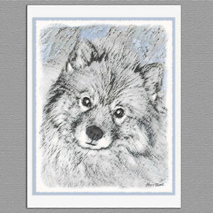 6 Keeshond in Aspen Dog Blank Art Note Greeting Cards