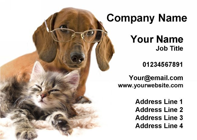 Animal de FP Groomer bienestar Tarjetas de visita personalizadas
