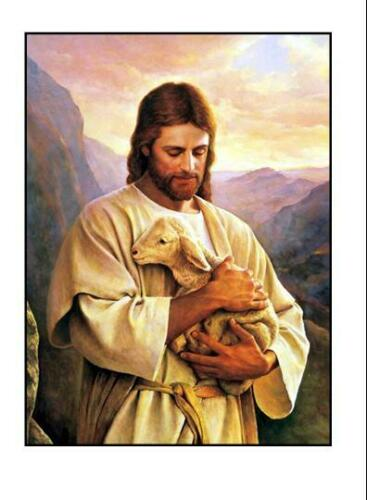 Jesus with Lamb 2 1//2 X 3 1//2 inches Refrigerator Magnet