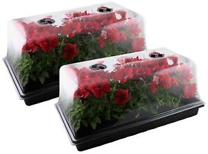 Mondi Set Of 2 Germination Seed Starter Trays With