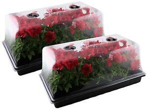 Mondi Set Of 2 Germination Seed Starter Trays With