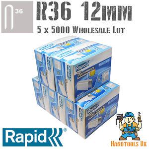 Rapid R36/Bo/îte de 5000/agrafes de c/âble 10/mm