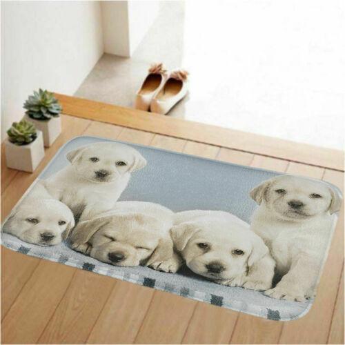 Home Bedroom Carpet Non Slip Doormat Animal Door Mat Decorative Floor Area Rug