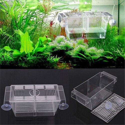 Hot Aquarium Fish Tank Guppy Double Breeding Breeder Rearing Trap Box Hatchery