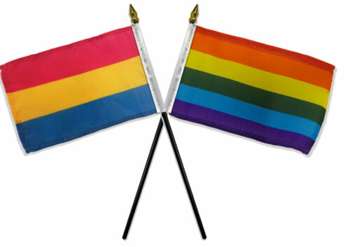 """Gay Pride Rainbow /& Pansexual Flags 4/""""x6/"""" Desk Stick Table NO BASE"""