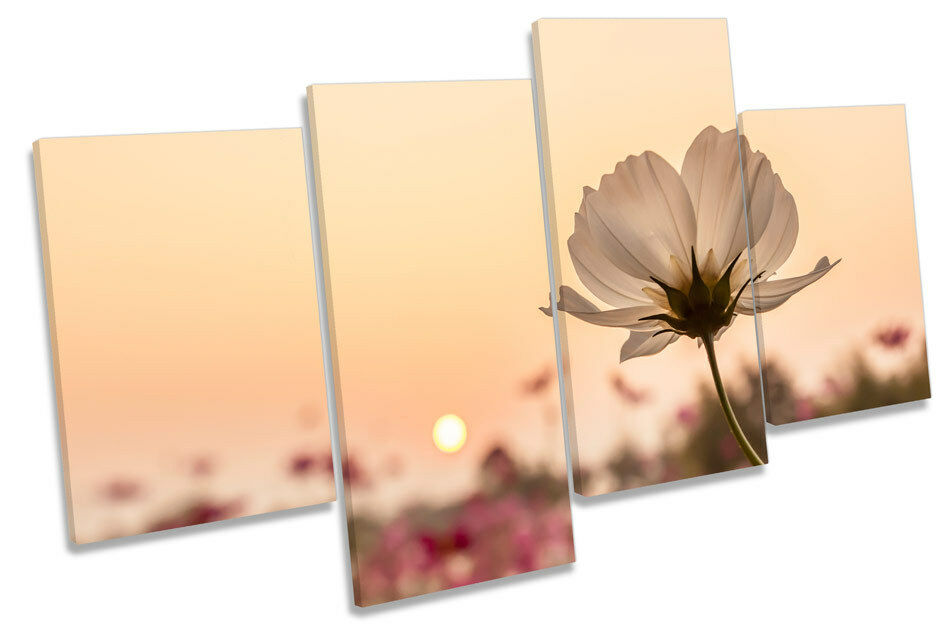 Flower Sunset Floral Landscape MULTI CANVAS Wand Kunst Boxed Framed