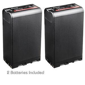 Kastar BP-U96 Batería (2 paquetes) para Sony BP-U90 BP-U60 BP-U30 totalmente decodificado