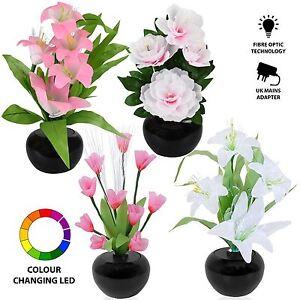 Image Is Loading RGB Colour Changing LED Fibre Optic Flower Vase