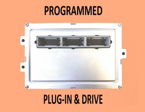 99 DODGE DAKOTA 5.2L M//T FED PROGRAMMED 56040064AG PLUG /& DRIVE