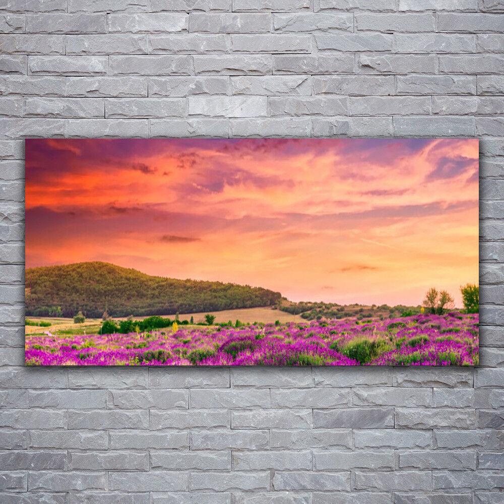 Photo sur toile Tableau Image Impression 120x60 Paysage Prairie Fleurs