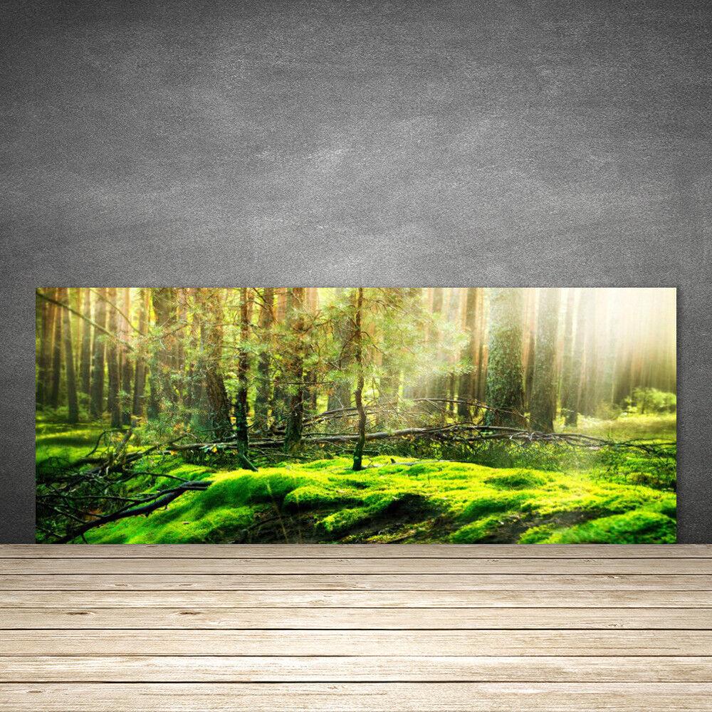 Crédence de cuisine en verre Panneau 125x50 Nature Bryophyte Forêt