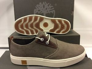 hommes Eur 5 Canvas A1g7f Chaussures Baskets pour Timberland Amherst 7 5 UK taille 41 qZISPv