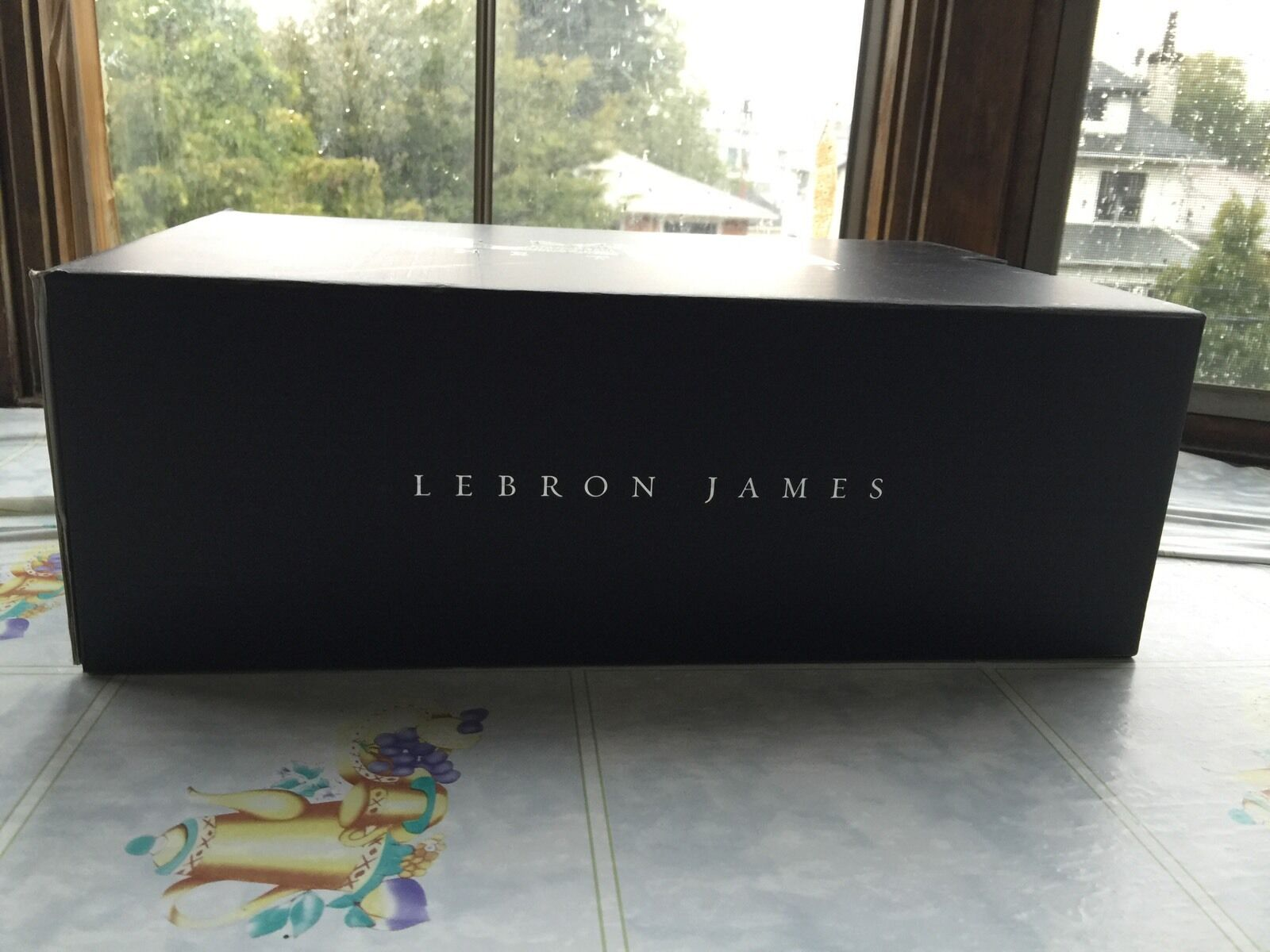 Lebron James 12   What the   size 8.5 and 9.5