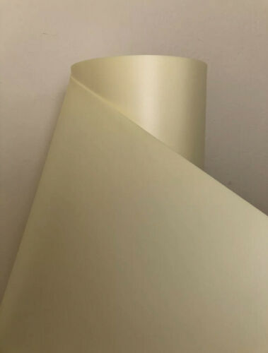 Isolon Champagne 2 mm thick 2 meters roll Isolon DIY big giant flowers Izolon