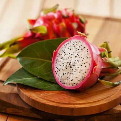 200 White Dragon Seeds Anti-aging Hylocereus Undatus Pitaya Organic Fruit S053
