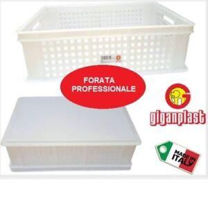 Pot-a-Fleurs-Recipient-Fore-Porte-Empatement-Service-Pates-Pain-Pizza-Poisson