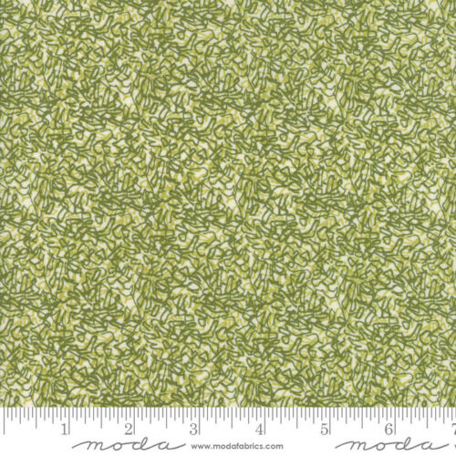 Blushing Peonies Charcoal 48614 18 by Robin Pickens Moda Fabrics Quilting