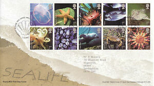 1-FEBRUARY-2007-SEA-LIFE-ROYAL-MAIL-FIRST-DAY-COVER-SEAL-SANDS-MIDDLESBROUGH-a