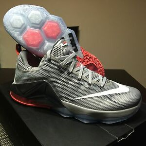 separation shoes eaa25 d7c0a Image is loading Nike-AIR-LEBRON-XII-13-8-Elite-Silver-