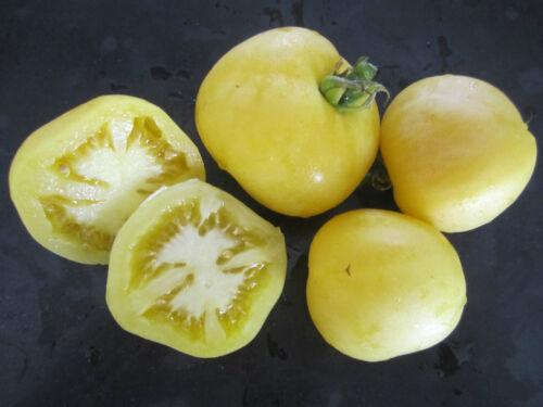 GARDEN PEACH rarität weiße besondere dünne Haut süß saftig SamenTomatensamen 10